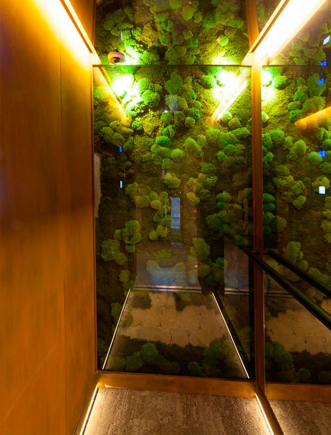 Eco-Designed Lifts